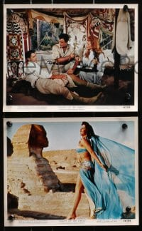 3a046 VALLEY OF THE KINGS 6 color 8x10 stills 1954 great images of Robert Taylor & Eleanor Parker!