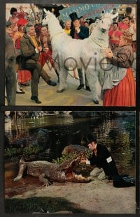 3k008 DOCTOR DOLITTLE 18 color 11x14 stills 1967 images of Rex Harrison who speaks with animals!
