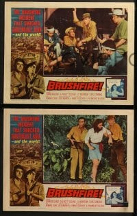 3k078 BRUSHFIRE 8 LCs 1962 John Ireland, Everett Sloane & Jo Morrow in Southeast Asia!