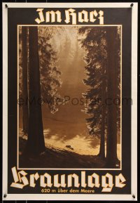 5g069 BRAUNLAGE 21x30 German travel poster 1920s wonderful image of a serene forest!