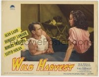 5m810 WILD HARVEST LC #5 1947 Alan Ladd in tanktop & sexy Dorothy Lamour on bed in his tent!