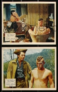 6d052 LIGHT IN THE FOREST 8 color English FOH LCs 1958 Disney, James MacArthur, Wendell Corey!