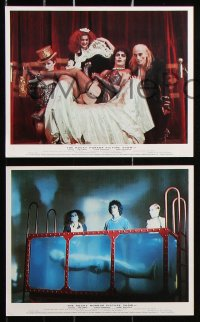 6d065 ROCKY HORROR PICTURE SHOW 8 color English FOH LCs 1975 Curry w/Sarandon, Hinwood, Quinn, rare!