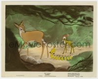 6h047 BAMBI color-glos 8x10 still 1942 his mother watches him with baby birds, Disney classic!