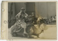 6h841 SON OF THE SHEIK 8x12 key book still 1926 great portrait of Rudolph Valentino on camel!