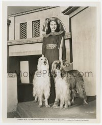 6h998 YVONNE DE CARLO 8.25x10 still 1946 great portrait in costume with two big Afghan dogs!