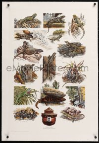 6t171 SMOKEY BEAR linen 20x31 special poster 1988 cool montage art of different types of lizards!