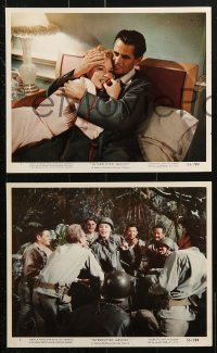 8c078 INTERRUPTED MELODY 6 color 8x10 stills 1955 Eleanor Parker as opera singer Marjorie Lawrence!