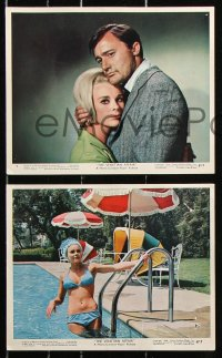 8c073 VENETIAN AFFAIR 7 color 8x10 stills 1967 spies Robert Vaughn & sexy Elke Sommer, Karloff!