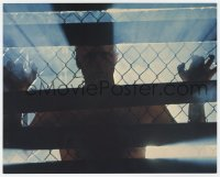 8g004 BLADE RUNNER color 8x10 still 1982 Ridley Scott, cool image of Rutger Hauer behind fence!