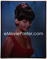 9h007 CLAUDIA CARDINALE 16x20 transparency 1960s sexy head & shoulders portrait showing cleavage!
