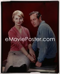 9h001 PAUL NEWMAN/JOANNE WOODWARD 16x20 transparency 1960s the legendary Hollywood husband & wife!