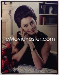 9h027 SOPHIA LOREN 16x20 transparency 1960s the beautiful Italian star with her hands clasped!