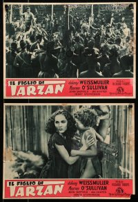 3a0017 TARZAN FINDS A SON set of 3 Italian 10x14 pbustas R1948 Weissmuller, O'Sullivan, Sheffield!