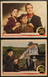 3g0727 LASSIE COME HOME 2 LCs 1943 Roddy McDowall & his beloved Collie, Donald Crisp, Lanchester!