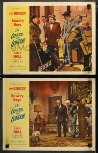 3g0734 LOOSE IN LONDON 2 LCs 1953 wacky images of Bowery Boys Leo Gorcey & Huntz Hall!