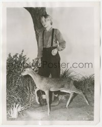 3r0637 YEARLING 8.25x10.25 still 1946 full-length close up of Claude Jarman Jr. with baby deer!