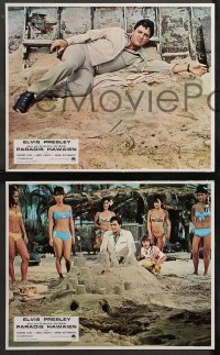 4m0056 PARADISE - HAWAIIAN STYLE 8 style B French LCs 1966 Elvis Presley, Leigh, Shigeta, different!