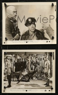 4r1216 PURPLE HEART 6 8x10 stills 1944 Dana Andrews, the drama behind the bombing of Japan!