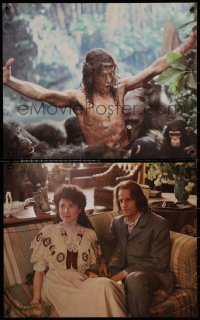 6s0006 GREYSTOKE group of 4 color 16x20 stills 1983 Christopher Lambert as Tarzan, Lord of the Apes!