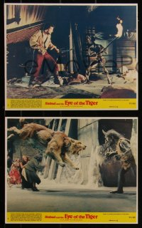 7k0020 SINBAD & THE EYE OF THE TIGER 8 8x10 mini LCs 1977 Ray Harryhausen, special effects scenes!