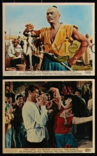 7k0022 TARAS BULBA 8 color English FOH LCs 1962 Tony Curtis & Yul Brynner in title role clash!