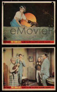 7k0039 THAT DARN CAT 6 color English FOH LCs 1965 Hayley Mills & Disney Siamese feline!