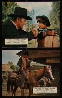 7k0024 TRUE GRIT 8 color English FOH LCs 1969 John Wayne as Rooster Cogburn, Kim Darby, Campbell!