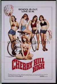 CHERRY HILL HIGH 1sheet