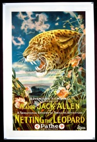 #147 NETTING THE LEOPARD 1sheet24 great art!