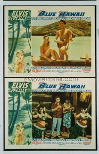 366 BLUE HAWAII LC