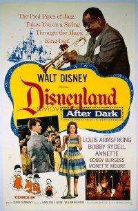 288 DISNEYLAND AFTER DARK linen 1sheet