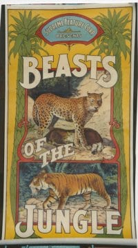 BEASTS OF THE JUNGLE linen 3sh