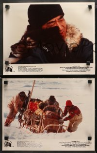 3g0026 ANTARCTICA 9 LCs 1984 Nankyoku Monogatari, cool images of Japanese sled dogs!