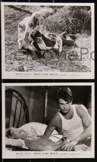 8g0180 BONNIE & CLYDE 6 8x10 stills 1967 crime duo Warren Beatty & Faye Dunaway, great images!