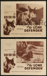 8g1004 LONE DEFENDER 4 LCs R1930s best images of the most famous canine hero Rin Tin Tin!