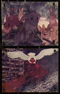 8w0017 WATERSHIP DOWN 27 color Dutch 8x10.25 stills 1978 based on Richard Adams' best seller!
