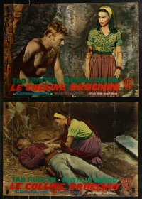 8x0702 BURNING HILLS group of 6 Italian 19x27 pbustas 1956 sexy Natalie Wood & Tab Hunter!