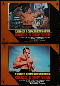 8x0711 HERCULES IN NEW YORK group of 6 Italian 19x26 pbustas 1986 Schwarzenegger in his 1st movie!