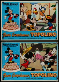 8x0670 MICKEY MOUSE JUBILEE SHOW group of 8 Italian 18x27 pbustas 1979 Walt Disney, Mickey & Goofy!