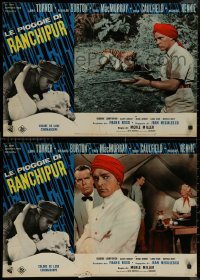 8x0675 RAINS OF RANCHIPUR group of 8 Italian 18x27 pbustas R1964 Lana Turner, Richard Burton!